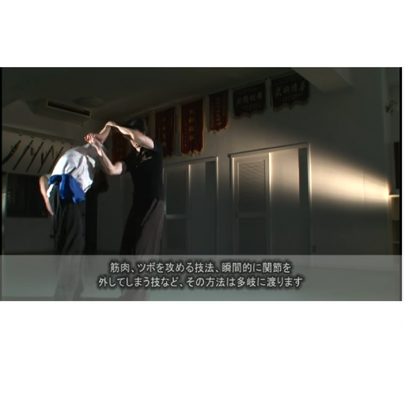R els arts martiaux chinois vol 2 niveau avanc miyahira for Arts martiaux chinois liste