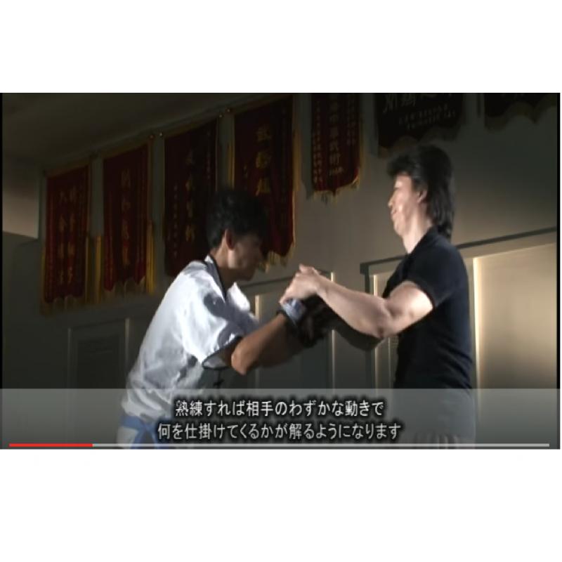 R els arts martiaux chinois vol 2 niveau avanc miyahira for Art martiaux chinois