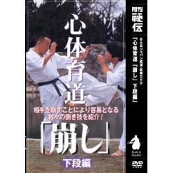 Shintaikudo kuzushi N°3 - HIROHARA Makoto