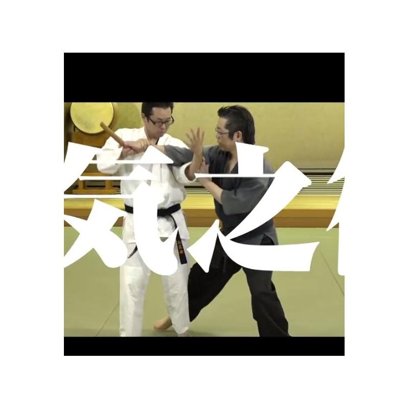 Japanese Dvd Aikido Daito Ryu Aikijutsu Michi Takase